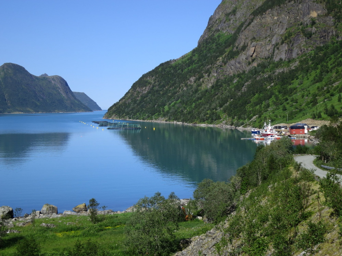 One of the many aquaculture facilites in the fjords